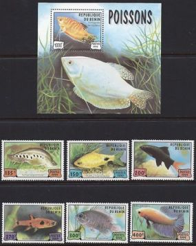 Benin 1999 Benin Scott #1148 - Scott #1154 Animals On Stamps FISH   Asia Stamp Collecting BRASIL Bangladesh Elephant Marine life Leopard   Spotted Deer Belize  Bear Tiger Birds of Prey Owls Hawks Eagles Animals  Stamps  Topical Stamps  Wildlife  Fish