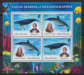IVORY COAST 2012 MARINE FAUNA Animals On Stamps FISH   Asia Stamp Collecting BRASIL Bangladesh Elephant Marine life Leopard   Spotted Deer Belize  Bear Tiger Birds of Prey Owls Hawks Eagles Animals  Stamps  Topical Stamps  Domestic Animals Rare Stamps OCEANOGRAPHES SS