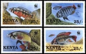 Kenya Fish  Bugs Bees Beetles Animals On Stamps FISH   Asia Stamp Collecting BRASIL Bangladesh Elephant Marine life Leopard   Spotted Deer Belize  Bear Tiger Birds of Prey Owls Hawks Eagles Animals  Stamps  Topical Stamps  Domestic Animals Rare Stamps Fly Nature Stamps stamps 1997 WWF-209