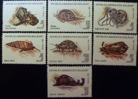 Malagasy 1992 Scott #1122 - Scott #1128  Bugs Bees Beetles Animals On Stamps FISH   Asia Stamp Collecting BRASIL Bangladesh Elephant Marine life Leopard   Spotted Deer Belize  Bear Tiger Birds of Prey Owls Hawks Eagles Animals  Stamps  Topical Stamps  Domestic Animals Rare Stamps Fly Nature Stamps Mollusks