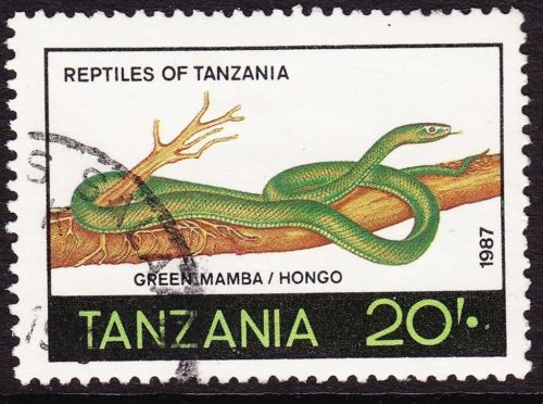 Animals on Stamps  Tanzania   Africa   Dendroaspis angusticeps    Snakes on Stamps   Common mamba    Green mamba   White-mouthed mamba venomous snake  Reptiles    African Snakes    Stamp Collecting   Wildlife
