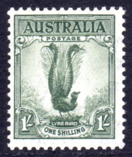 Animals on Stamps Australia  1937 1c Grey-green Lyrebird stamp  SG 174   Scott #175