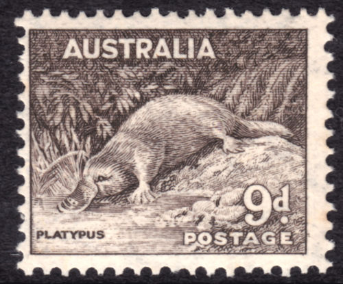 Animals on stamps mammals on stamps platypus on stamps AUSTRALIA Platypus Ornithorhynchus anatinus Stamp Australian Stamp collecting Australian Wildlife wild animals on stamps wildlife on stamps egg-laying mammals on stamps topical stamp collecting topical postage stamps animals wildlife conservation wild animals collecting mammals on stamps collecting postage stamps as a hobby postage stamps for sale buy animals on stamps worldwide wildlife  wild animals of the world mammalia Ornithorhynchus Monotremata endangered animals  collecting endangered animals on stamps endangered mammals endangered animals of Australia duck-billed platypus exotic animals on stamps  strange animals of the world