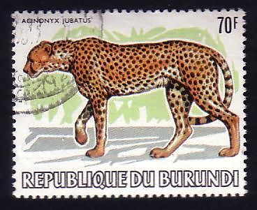 Animals on Stamps  Africa   burundi Scott# 599 wwf  world wildlife federation  african cheetah  Acinonyx jubatus     feline     fastest land animal