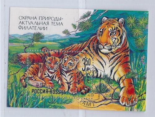 animals on stamps wildlife tigers on stamps mammals on stamps mammalia USSR SOVIET UNION RUSSIA STAMPS  wildlife SOUVENIR SHEET  tigers  Carnivora   Felidae     collecting mammals on stamps  collecting animals of stamps topical stamps collecting  felines  wild cats big cats  cats on stamps c Carnivores on stamps Asian animals on stamps wild tigers stamp collecting for beginners   Panthera tigris  stamp collection  stamp collecting hobby  postal stamps are fun  stamp collector the topical stamp collector collecting tigers fauna stamps wildlife conservation endangered animals on stamps endangered wildlife endangered wild animals on stamps collecting endangered animals on stamps collecting stamps for fun and profit postage stamps are fun wild mammals on stamps Asian mammals on stamps Asian wildlife Asian stamps Asian wildlife conservation collecting Asian animals on stamps collecting Asian wildlife on stamps Asian stamp collection
