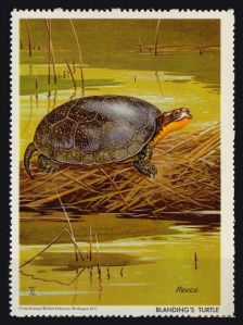 1960 National Wildlife Federation (NWF) BLANDING'S TURTLE Poster Stamp