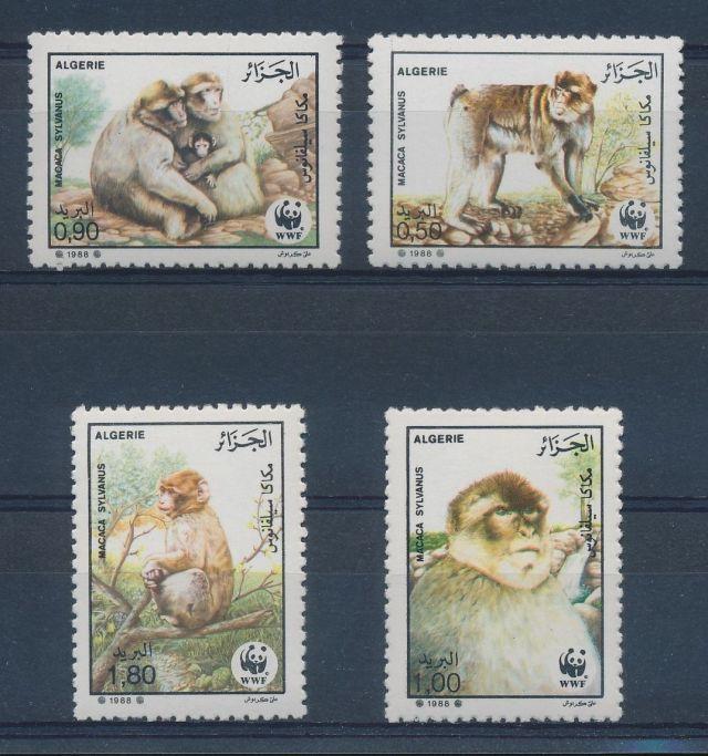 ALGERIA 1988 BARBARY APES SC# 872-75 FDC WWF NO. 069 Algeria animals fauna flora wildlife fine WWF set