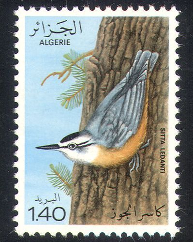 animals on stamps birds on stamps algeria scott 633 first day issue fdc Algerian nuthatch Sitta ledanti nuthatch wildlife stamps African Stamps Algerian Stamps animals of African Stamps African Animals African Wildlife Africa thematic stamp collectionAlgeria Scott #633 – 1979 – Algerian nuthatch (Sitta ledanti)