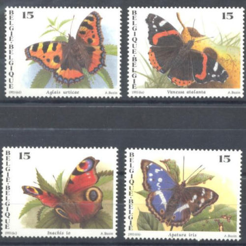 BELGIUM 1993 BUTTERFLIES  animals on stamps butterflies on stamps  topical stamp collecting insects on stamps postage stamps collecting postage stamps as a hobby collectibles wildlife stamps wild animals stamps  butterfly thematic stamp collector