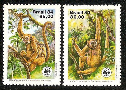 Brazil WWF STAMP Monkey Stamps world wildlife fund stamps topical stamp collecting animals on stamps wildlife stamps south american stamp collection thematic stamp collector wildlife on stamps wild animals on stamps postage stamps primates on postage stamps  postage stamps of brazil  apes latin america jungle animals  mammals on stamps