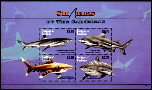 sharks stamps fish on stamps animals on stamps collecting stamps topical stamp collecting thermatic stamp collector  sharks antigua barbuda