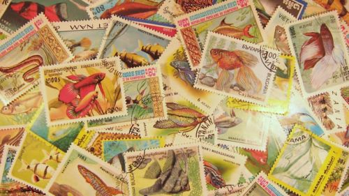 Fishes fish  sealife tropical fish marine fishes freshwater fishes, stamp collecting topical stamp collector postage stamps fish on stamps  fish of the world (freshwater)