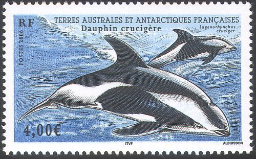 Hourglass Dolphin (Lagenorhynchus cruciger)   animals on stamps  wildlife stamps   postage stamps topical stamp collecting thematic stamp collector    dolphin antarctica