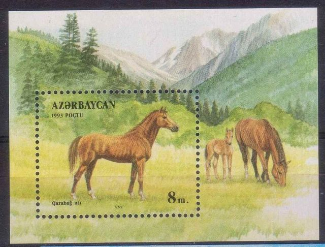 AZERBAIJAN 1993 HORSE postage stamps  horses on stamps  animals on stamps wildlife stamps topical stamp collecting thematic stamp collector  collecting postage stamps as a hobby horse breeds types of horses stamp collector of fauna wild animals on stamps wildlife on stamps mammals on stamps postage stamps of the world