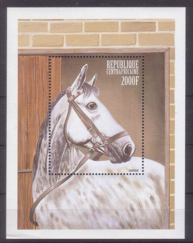 CENTRAL AFRICA 1999 HORSES horses on stamps  animals on stamps wildlife stamps topical stamp collecting thematic stamp collector  collecting postage stamps as a hobby horse breeds types of horses stamp collector of fauna wild animals on stamps wildlife on stamps mammals on stamps postage stamps of the world