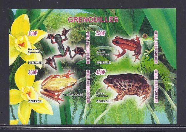Chad Tropical Frogs Souvenir Sheet