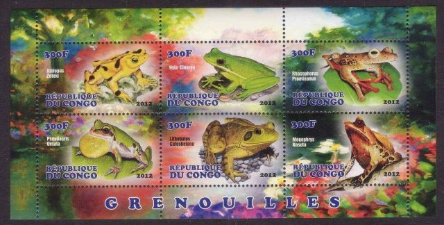 CONGO 2012 FROGS amphpbpans on stamps wildlife postage stamps frogs of africa frog postage stamps topical stamp colllecting thematic stamp collector stamp collecting hobby stamp collecting for beginners african frog postage stamps  congo africa animals on stamps wild animals on stamps wildlife on stamps frogs on stamps  frogs of the congo frogs of africa frog postage stamps of africaafrican wildlife african wild animals african amphibians africa postgae stamps  amphibian postage stamp  Anura