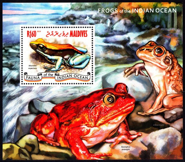 Maldives 2014 Frogs Souvenir Sheet animals on stamps fauna stamps wildlife stamps topical stamp collector thematic stamp collection postage stamp collecting  wildlife on stamps frogs on stamp