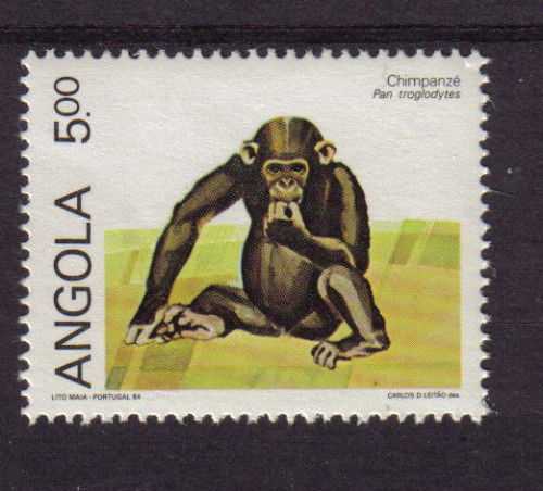 ANGOLA 1984 SG#835 5k CHIMPANZEE    topical stamp collecting thematic stamp collector animals on stamps african wildlife africa wild animals on stamps primates on stamps monkeys on stamps postage stamps of angola african postage stamps african stamps angolan postage stamps angolan stamp collecting afrcian stamp collecting wildlife on stamps wildlife stamps african wildlife african primate mammal african monkey great ape african ape stamps with animals apes on postage stamps monkeys on postage stamps collect postage stamps