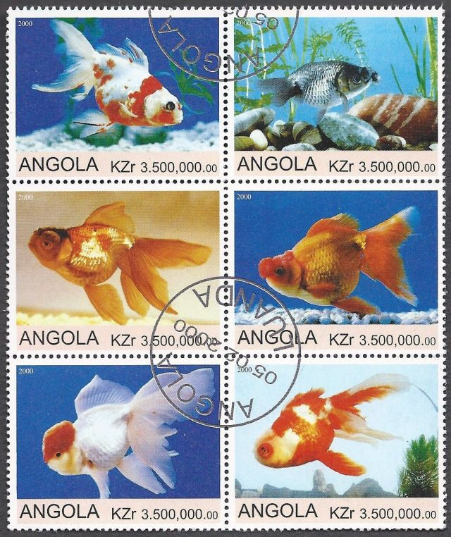 Angola - Set of Goldfish on Stamps  topical stamp collecting thematic stamp collector stamp collections wildlife postage stamps fish on stamps animals on stamps postage stamp collecting stamp collecting for beginners aquarium fish goldfish bowl stamps that show fish  collecting stamps as a hobby  wildlife on stamps african wildlife angola postage stamps