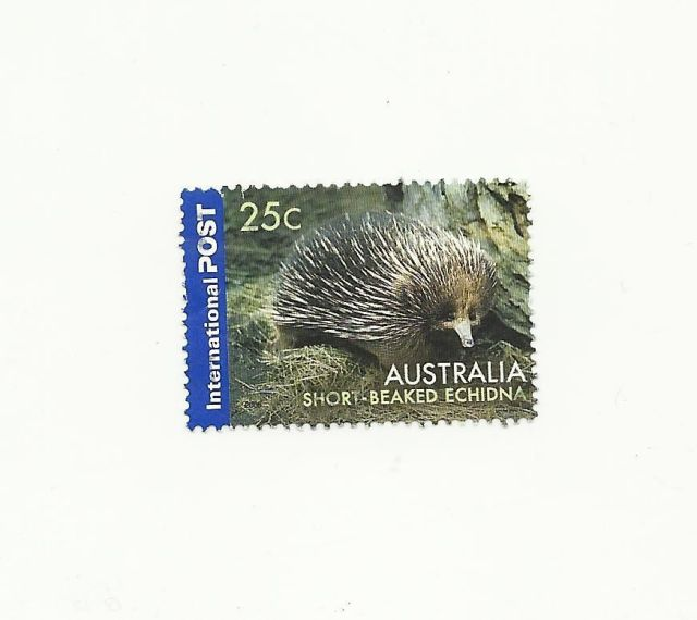 Australia 2006 International Post Echidna    animal stamp wildlife stamp topical stamp collecting thematic stamp collecting Australian wildlife postage stamps  spiny anteater collecting postage stamps  Australian spiny anteater  echidna Short-beaked echidna Tachyglossus aculeatus - 25c stamp