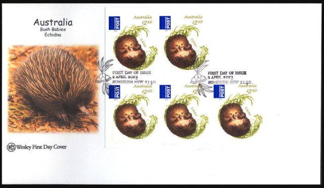AUSTRALIA 2013  WCS ECHIDNA BOOKLET COVER    animal stamp wildlife stamp topical stamp collecting thematic stamp collecting Australian wildlife postage stamps  spiny anteater collecting postage stamps  Australian spiny anteater  echidna Short-beaked echidna Tachyglossus aculeatus