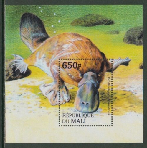Mali - Platypus - Wild Animals - SS stamp  Ornithorhynchus anatinus  zoological stamps  animals on stamps wildlife stamps Australian postage stamps topical stamp collection thematic stamp collecting mammals on stamps fauna on stamps philatelist  philatelic collection  philatelic collector stamp collecting for beginners Australian wildlife Australian fauna Australia topical stamp collecting